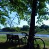 立夏の多摩川サイクリング