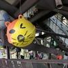 台湾の猫村!猴硐(ホウトン)へ。台北駅から電車での行き方は?