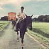 乗馬をしたので、体験記を書くよ