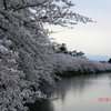 開幕!弘前桜祭り 6(私事ですが)