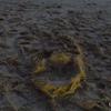足跡   footprints