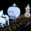 クリスマスイブの夜にカメラを抱えて独りでライトアップイベントを撮りに行った結果