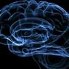 人間は脳を10%しか使ってない嘘?