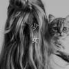 相棒18 第3話「少女」感想 猫は少女の真の姿に気づいてた