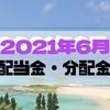 【米国株】配当金30万円で沖縄旅行を目指すブログ【2021年6月配当金】