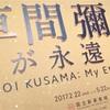草間彌生 2017 国立美術館