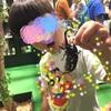 【大昆虫展】カブトムシに触りに行こう!!!
