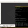 【WindowsでROSを使おう!】WSLにROSをインストールする話