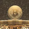 仮想通貨が暗号通貨になるとき :ハワイ