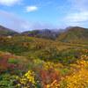 天馬尾根の秋色~栗駒山
