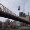 ニューヨークでロープウェイに乗ってみた。ちょっと違った景色が見られて楽しい!