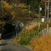 12月4日の貨物列車、東海道旅客線迂回運転(う2089レ)