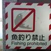 【バスフィッシング】  釣り禁止について考える