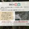 北海道旅行記⑥ 番外編