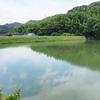 天ノ池(長崎県波佐見)