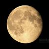 立待月(月齢16.132&16.155)