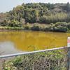 武生水地区の池(仮称)(長崎県壱岐)