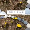 3月弥生春本番