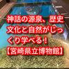 【宮崎県立博物館】神話の源流、宮崎の歴史文化と自然がじっくり学べる!