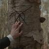 祖母から語り聞かされた森の秘密、降りかかる災厄から身を守る『THE BIRCH』の魔術。