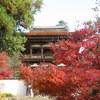 【行ってみた】長岳寺の紅葉の見どころ、アクセス、駐車場情報など
