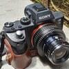 【レンズ沼294本目】出所不明のC-CURTAGON 35mm F2.8 M42マウントはコンパクトで堅実な写り【α7II】