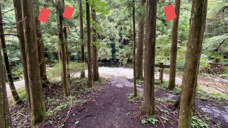 「Erode」〜森の中に音の結界を作る【第7回】realize〜細井美裕の思考と創発の記録