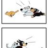 犬の歯医者さん