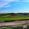 【神戸新聞杯 2020予想】追い切り・ラップ適性 & 各馬評価まとめ / 真剣に予想出来るレースになったことへの幸せ