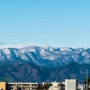 Today's shot 070121(雪化粧)