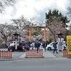 平野神社の桜苑2019、有料になって入場料が必要!