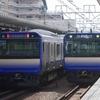5月4日撮影 横須賀線 湘南新宿ライン 西大井駅 田町で撮り逃したので…。185系 あしかが大藤まつり号をはじめ色々撮影