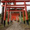 赤い鳥居が立ち並び可愛い!郡山のパワースポット「高屋敷稲荷神社」を参拝してきた...!