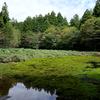 愛媛県久万高原町 石鎚山「笹倉湿原」