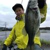 琵琶湖 銀兵