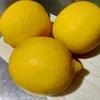 【レモンの活用法】とても簡単!はちみつレモン!!