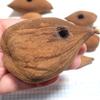 イスノキの虫こぶで「ひょん笛」を作る
