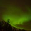 オーロラを見るならノルウェーのトロムソがおすすめ!