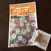 3-209   愛すべき花たち〜2019年春の花の種蒔き〜