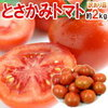 どうして?既に日本の市場で出回ってるトマトを、なぜ韓国から輸入?