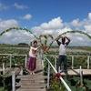 【カンボジア女子一人旅】トンレサップ湖までのハス畑の景色♪♪