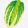 【緊急事態日記】納豆がない、白菜が高い