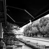 Cafe  at  ParksSiba