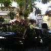 街のオアシス心落ち着くカフェCafeCARO