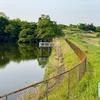 笠取池(愛知県常滑)