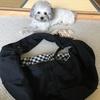 犬とのお出かけに便利★ドッグスリングを買いました