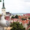 【エストニア・タリン】 フィンランドを近くに感じる、海沿いの素敵な旧市街地。