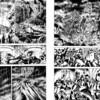 「ブラック・エンジェルス」が全巻無料で読める!あの独自性溢れる「関東破滅地帯」を再読し涙。