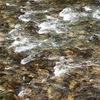 白く砕ける川の様
