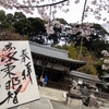 裏山の桜花苑は穴場の桜スポット 京都・熊野若王子神社